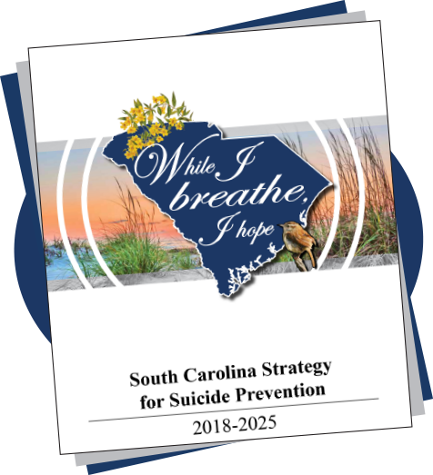 South Carolina Strategy for Suicide Prevention