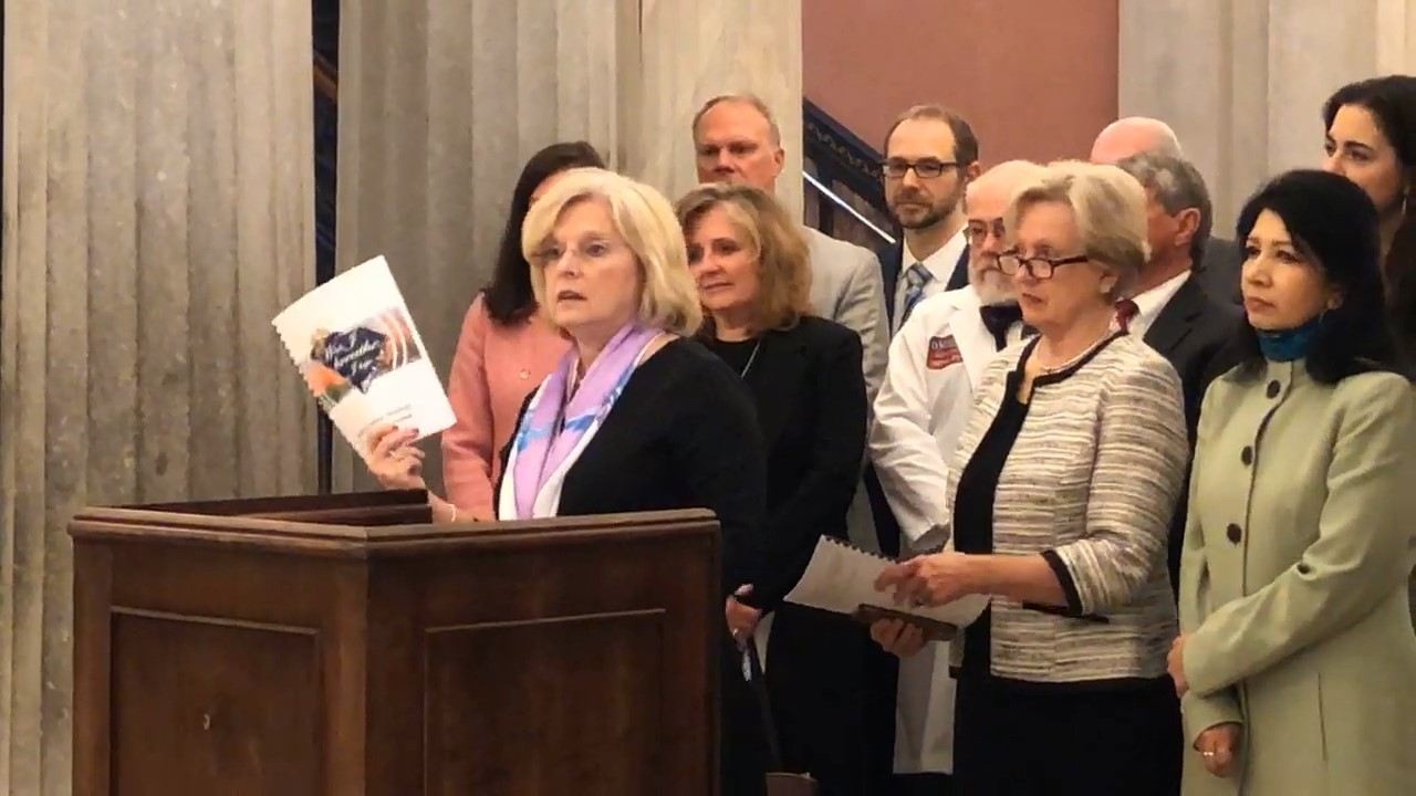 Accompanied by members of  the SC Suicide Prevention Coalition,  Co-Chair Sen. Katrina Shealy presents the South Carolina Strategy for Suicide Prevention: 2018-2025 during a press conference in April 2019.